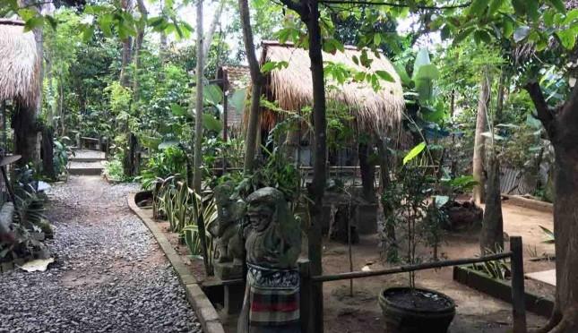 Menikmati Kopi Luwak Di Wisata Agro Negari Bali