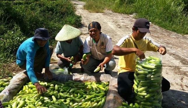 Profil Agrowisata Malang