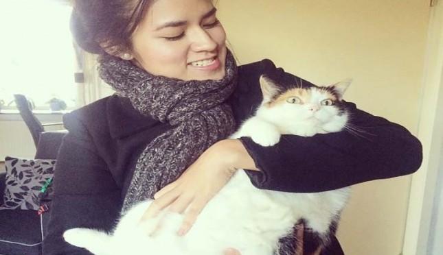 Kucing Hewan Kesayangan Para Selebriti